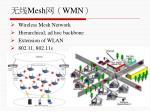 mesh wmn