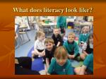 what does literacy look like