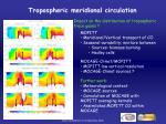 tropospheric meridional circulation1