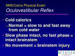 ams coma physical exam oculovestibular reflex