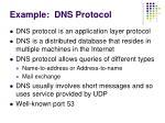 example dns protocol