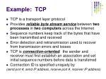 example tcp