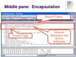 middle pane encapsulation