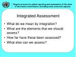 integrated assessment1
