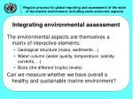 integrating environmental assessment