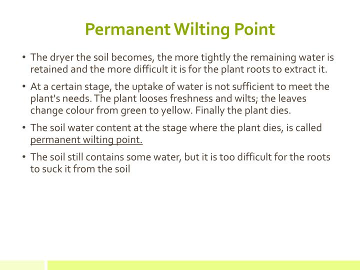 Permanent Wilting Point