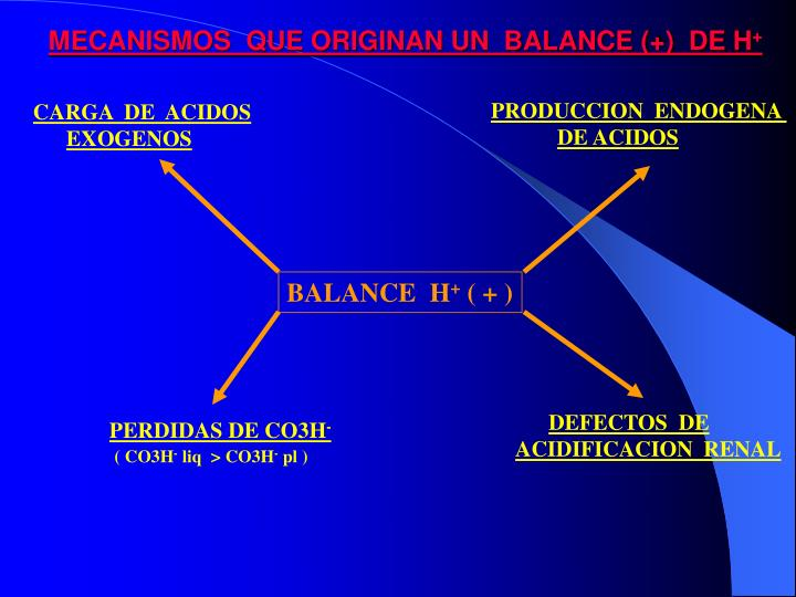 MECANISMOS  QUE ORIGINAN UN  BALANCE (+)  DE H