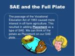 sae and the full plate2
