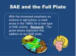 sae and the full plate3
