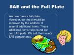sae and the full plate4