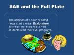 sae and the full plate5