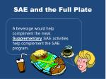 sae and the full plate6