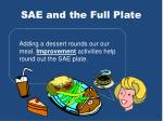 sae and the full plate7