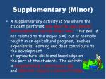 supplementary minor