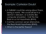 example cartesian doubt