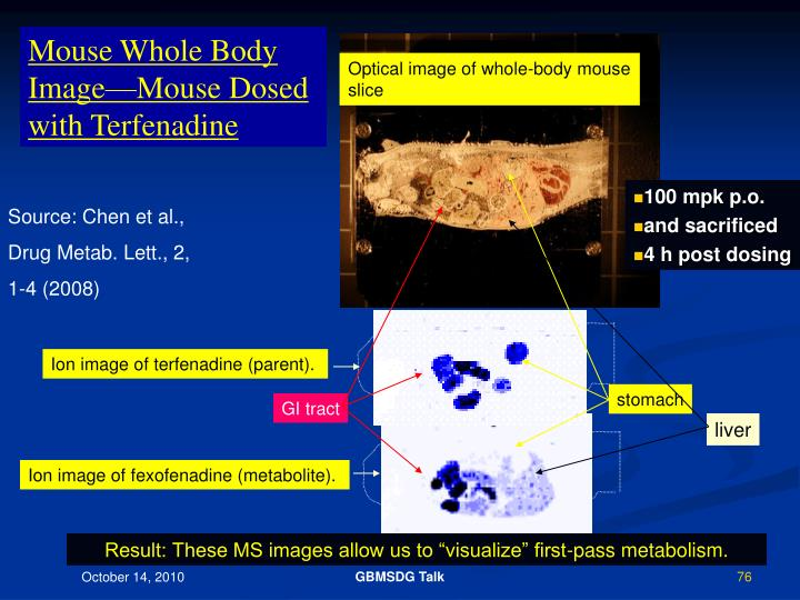 Mouse Whole Body Image—Mouse Dosed with Terfenadine