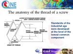 the anatomy of the thread of a screw