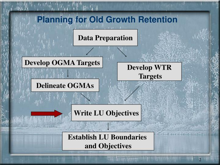 Planning for old growth retention