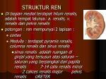 struktur ren