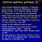 central auditory pathway ii