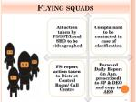 flying squads