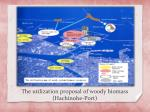 the utilization proposal of woody biomass hachinohe port