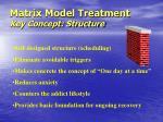 matrix model treatment key concept structure