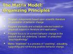 the matrix model organizing principles