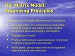the matrix model organizing principles1