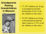 grandparents raising grandchildren in missouri