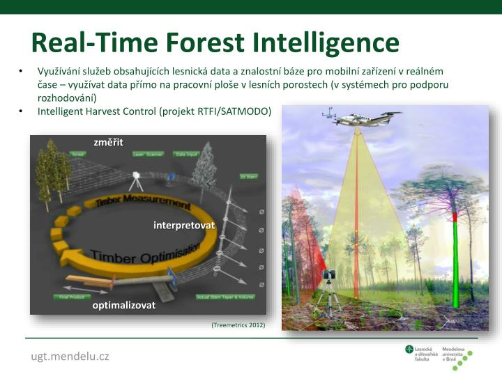 Real-Time Forest Intelligence