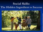 social skills the hidden ingredient to success