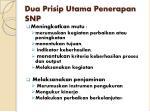 dua prisip utama penerapan snp