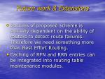 future work extensions