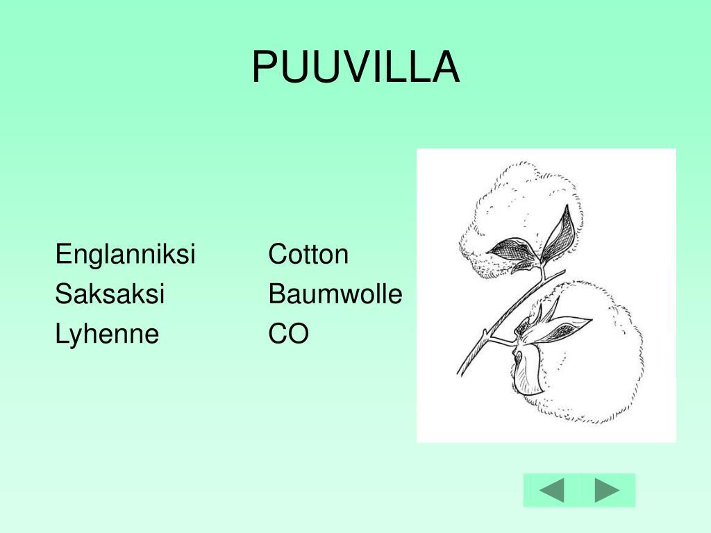 Käännöspalvelu Elisa Wulff Ky tarjoaa englannin ja suomen kielen käännös-, kielenhuolto-, editointi- jalokalisointipalveluita.