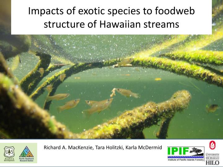 impacts of exotic species to foodweb structure of hawaiian streams n.