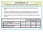 schedule e program summary and direct care related costs