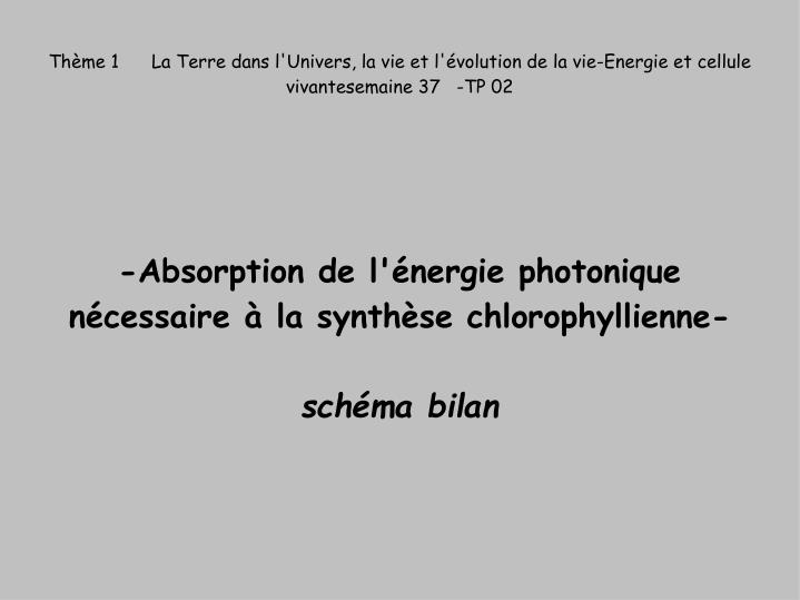 absorption de l nergie photonique n cessaire la synth se chlorophyllienne sch ma bilan n.