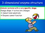 3 dimensional enzyme structure