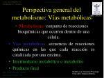 perspectiva general del metabolismo v as metab licas