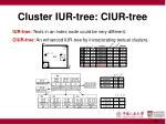 cluster iur tree ciur tree