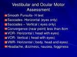 vestibular and ocular motor assessment