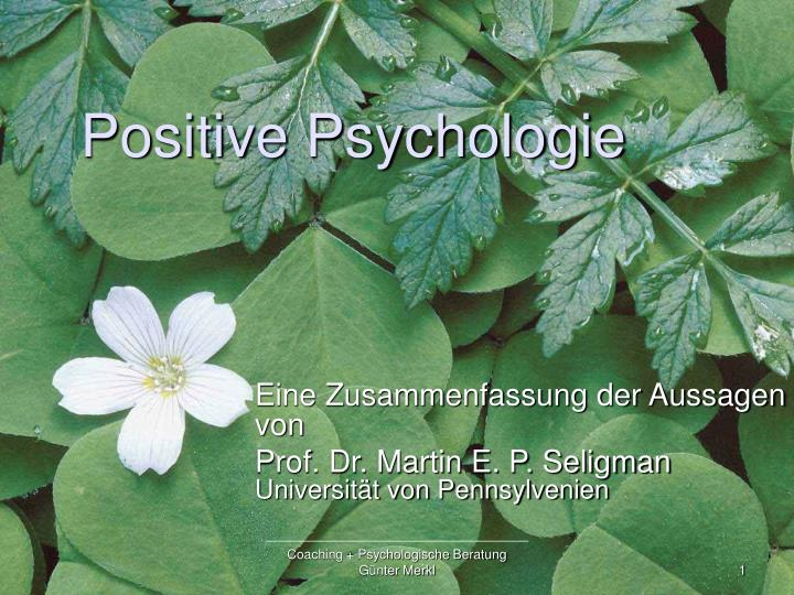 positive psychologie n.