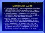 monocular cues1
