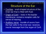 structure of the ear1