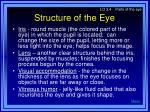 structure of the eye1