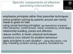 specific components of effective parenting interventions