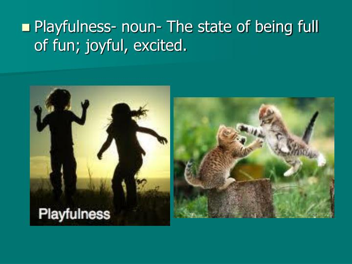 Playfulness- noun- The state of being full of fun; joyful, excited.