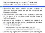 hydromine agriculture in cameroon partnership for cameroon s sustainable prosperity