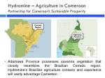 hydromine agriculture in cameroon partnership for cameroon s sustainable prosperity1